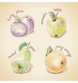 Set of vintage fruit vector