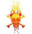 Skull fire white vector