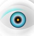 Globe blue eye vector