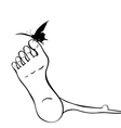 Foot and butterfly vector