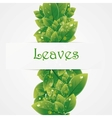 Green nature leaves background vector