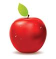 Fresh red apple vector