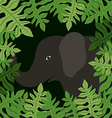 Jungle design vector