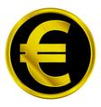 Euro sign button vector