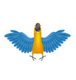 Cute macaw or parrot cartoon vector