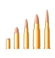 Set of gun bullets vector