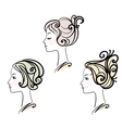 Portrait of three female with stylised hairstyles vector