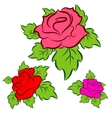 Roses set vector