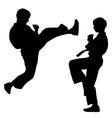 Black silhouettes of karate sport vector