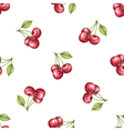 Watercolor pattern of fruit cherry vector