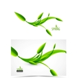 Abstract spring summer waves vector