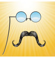 Mustaches and glasses vector