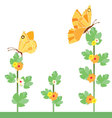 Yellow butterflies and flowers vector