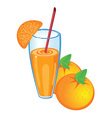 Orange fruit juice vector