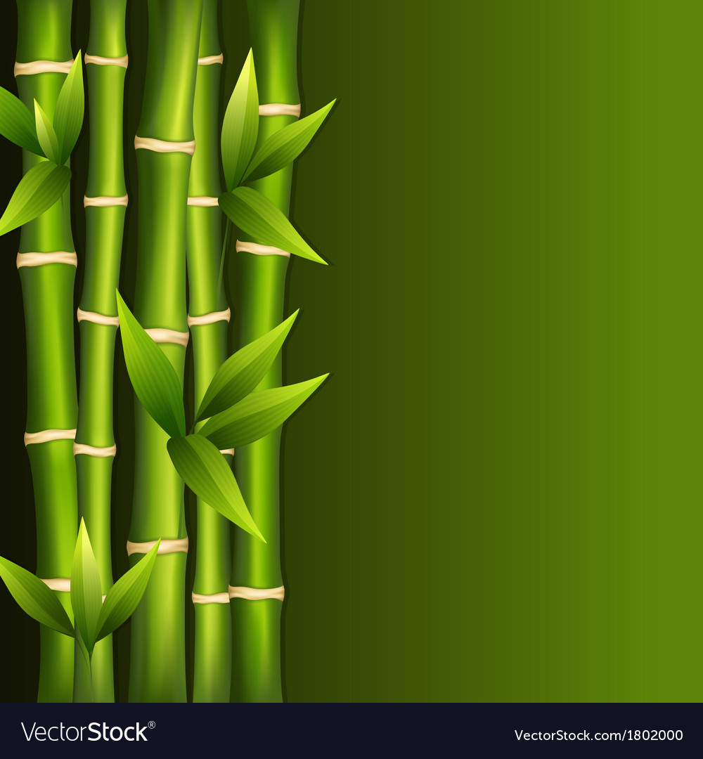 Green bamboo vector | Price: 1 Credit (USD $1)