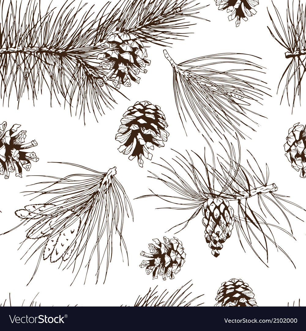Pine branches seamless pattern vector | Price: 1 Credit (USD $1)