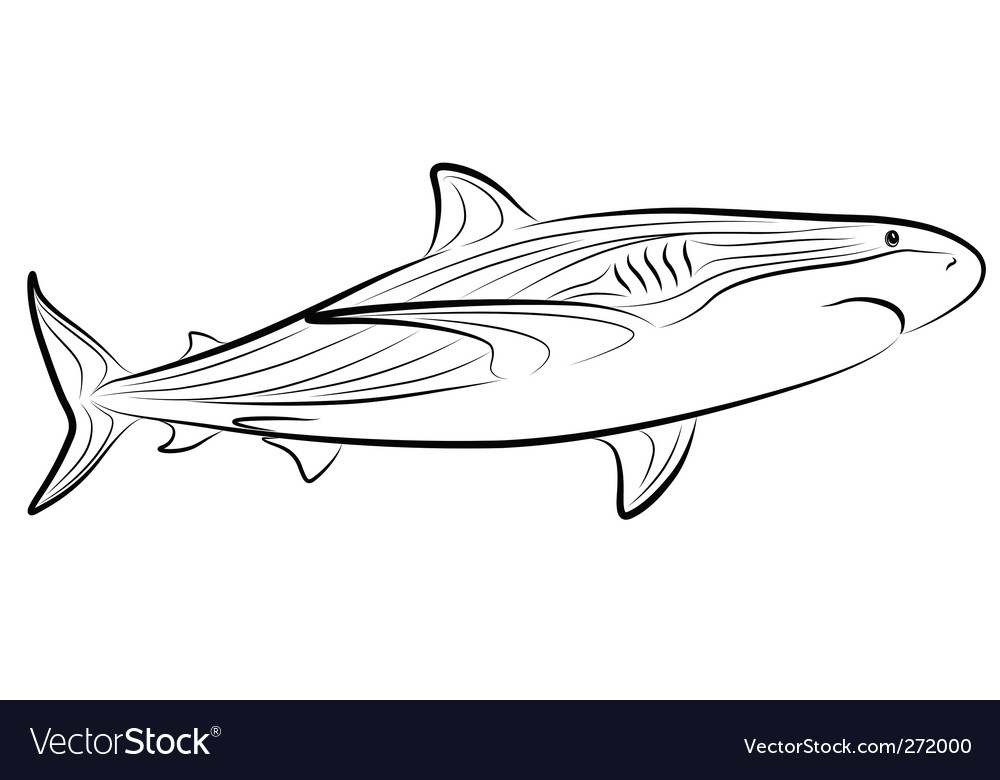 Shark tribal tattoo vector | Price: 1 Credit (USD $1)