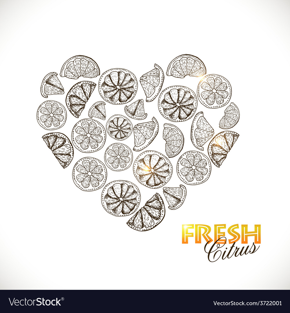 Isolated heart of citrus on white background vector | Price: 1 Credit (USD $1)