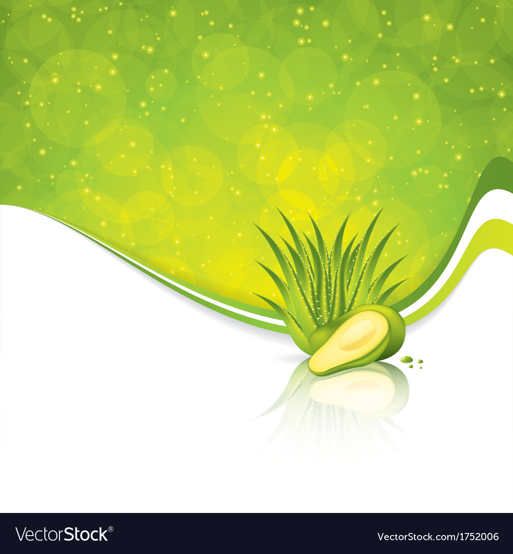 Avocado and aloe vera vector | Price: 1 Credit (USD $1)