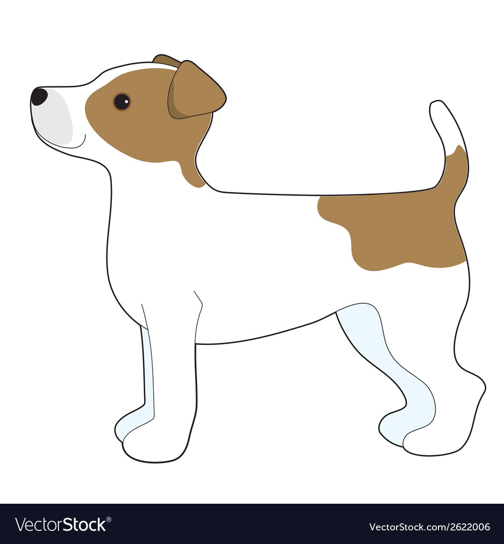 Jack russell terrier vector | Price: 1 Credit (USD $1)