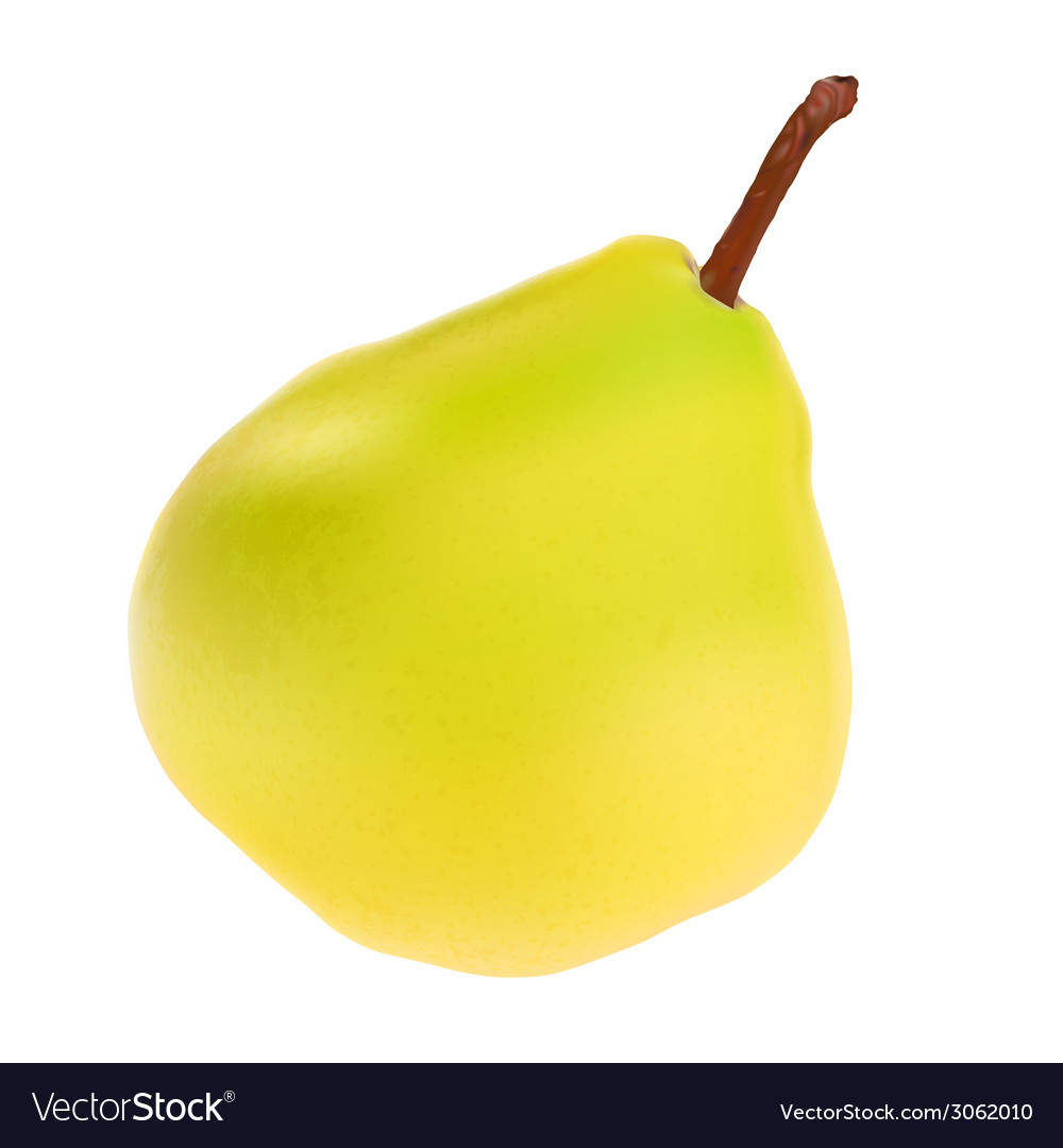 Green pear isolated on white background vector   Price: 1 Credit (USD $1)