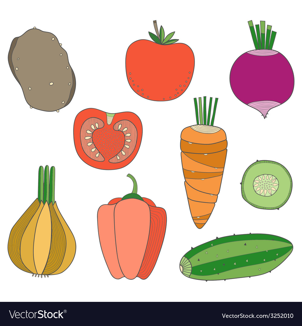 Set of hand drawn vegetables vector | Price: 1 Credit (USD $1)