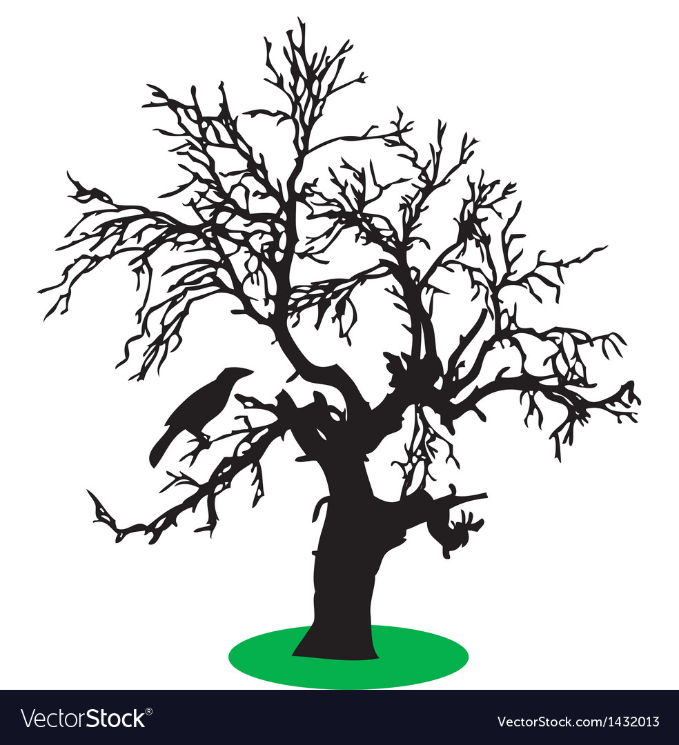 Bird on tree vector | Price: 1 Credit (USD $1)