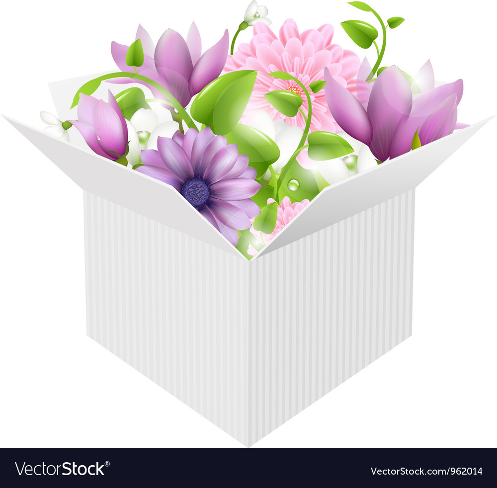 Box bouquet vector | Price: 1 Credit (USD $1)