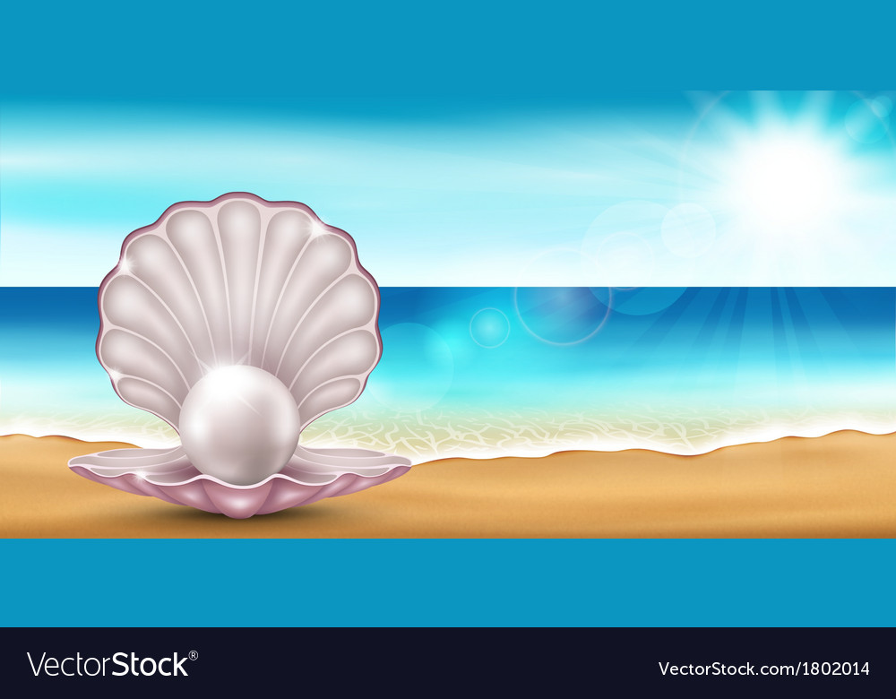 Shell beach vector | Price: 1 Credit (USD $1)
