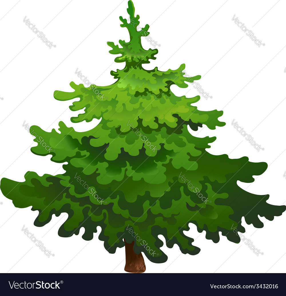 Pine tree drawing vector | Price: 1 Credit (USD $1)