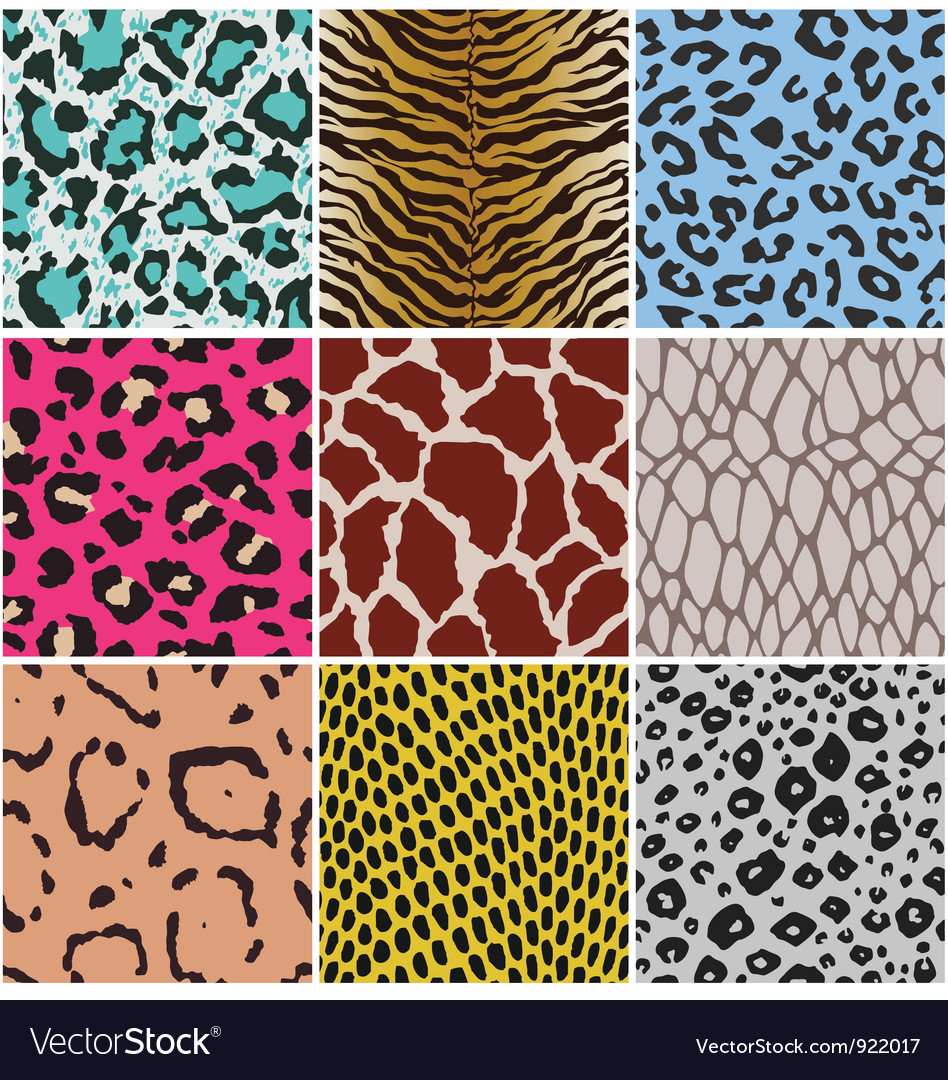 Animal skin pattern vector | Price: 1 Credit (USD $1)