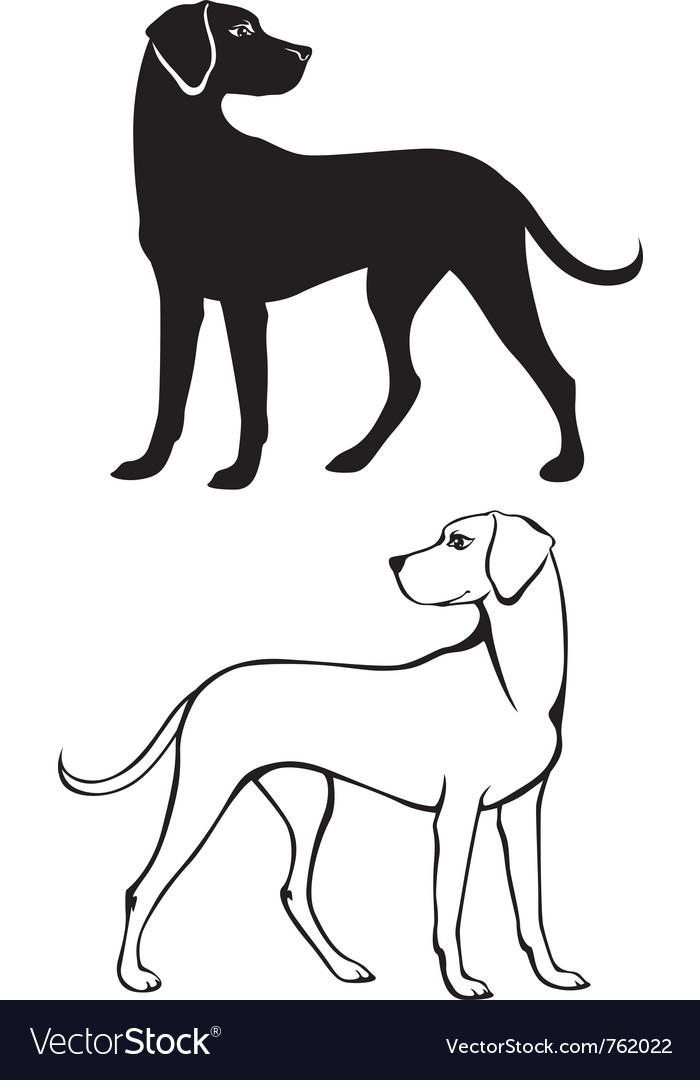 Silhouette and contour of dog vector | Price: 1 Credit (USD $1)