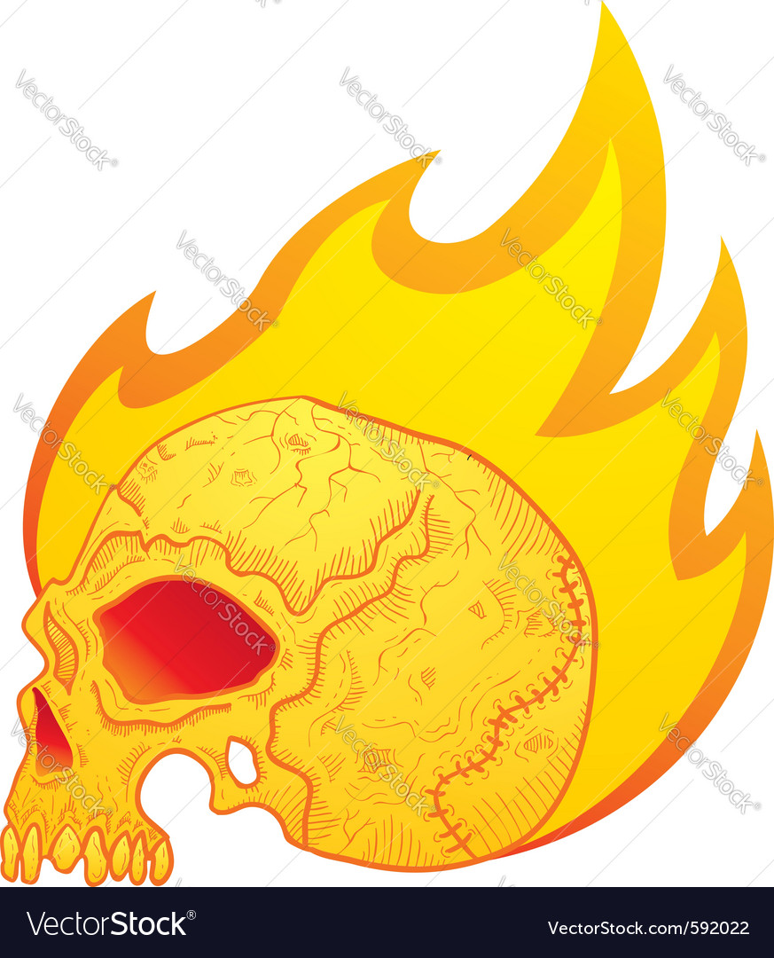 Skull in flames vector | Price: 1 Credit (USD $1)