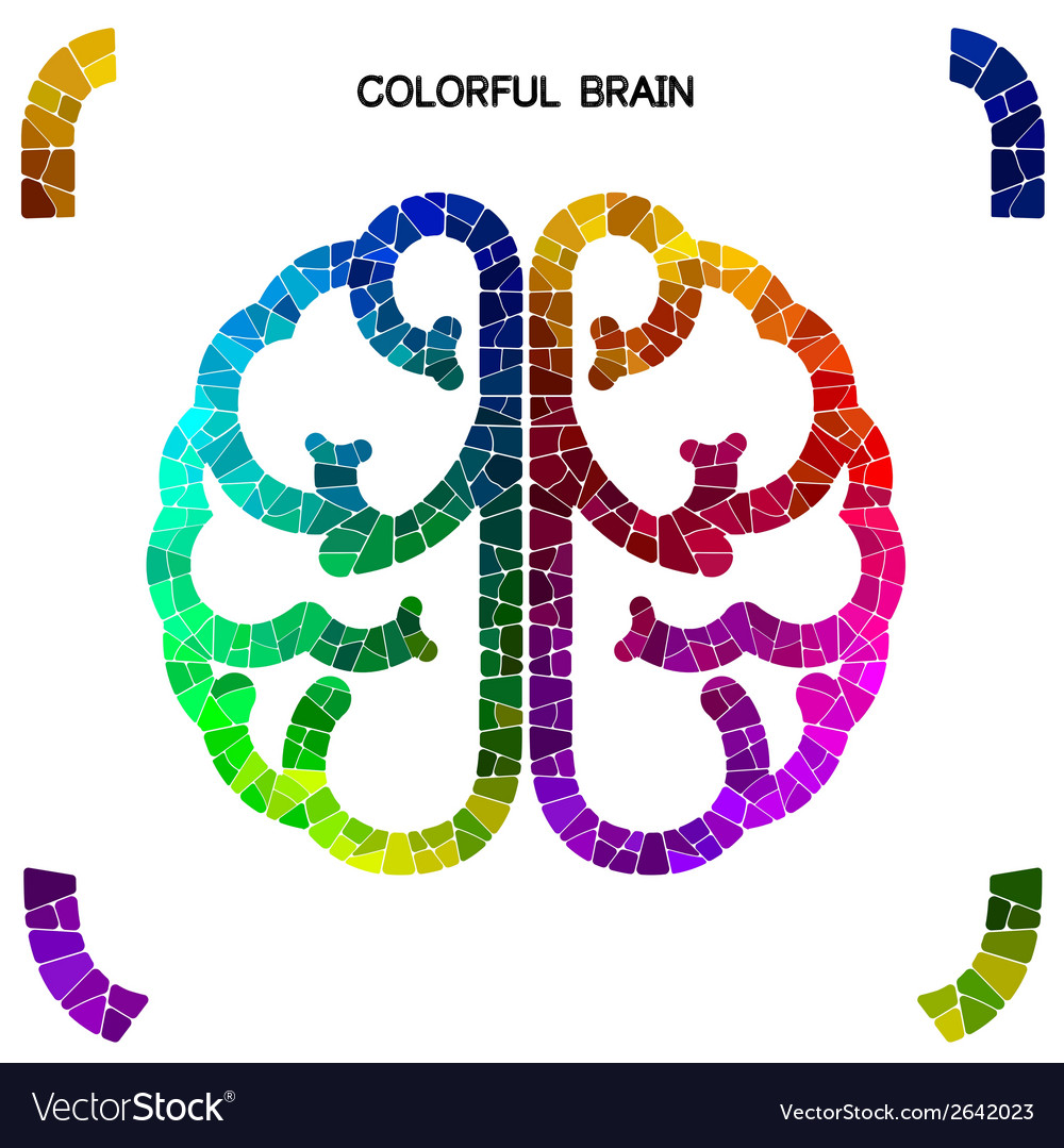 Creative colorful left brain and right brain vector | Price: 1 Credit (USD $1)
