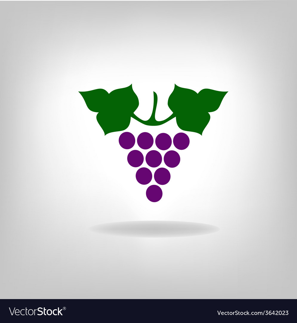 Grapes vector | Price: 1 Credit (USD $1)