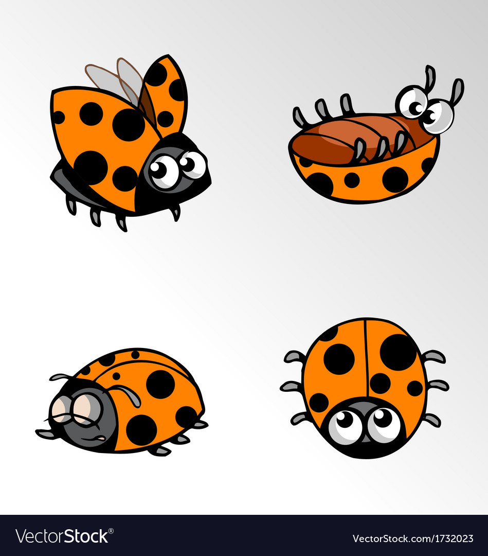Insect ladybug cartoon vector | Price: 1 Credit (USD $1)