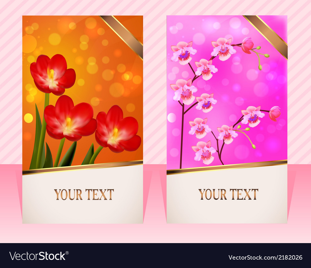 Two cards with flower for invitations vector | Price: 1 Credit (USD $1)