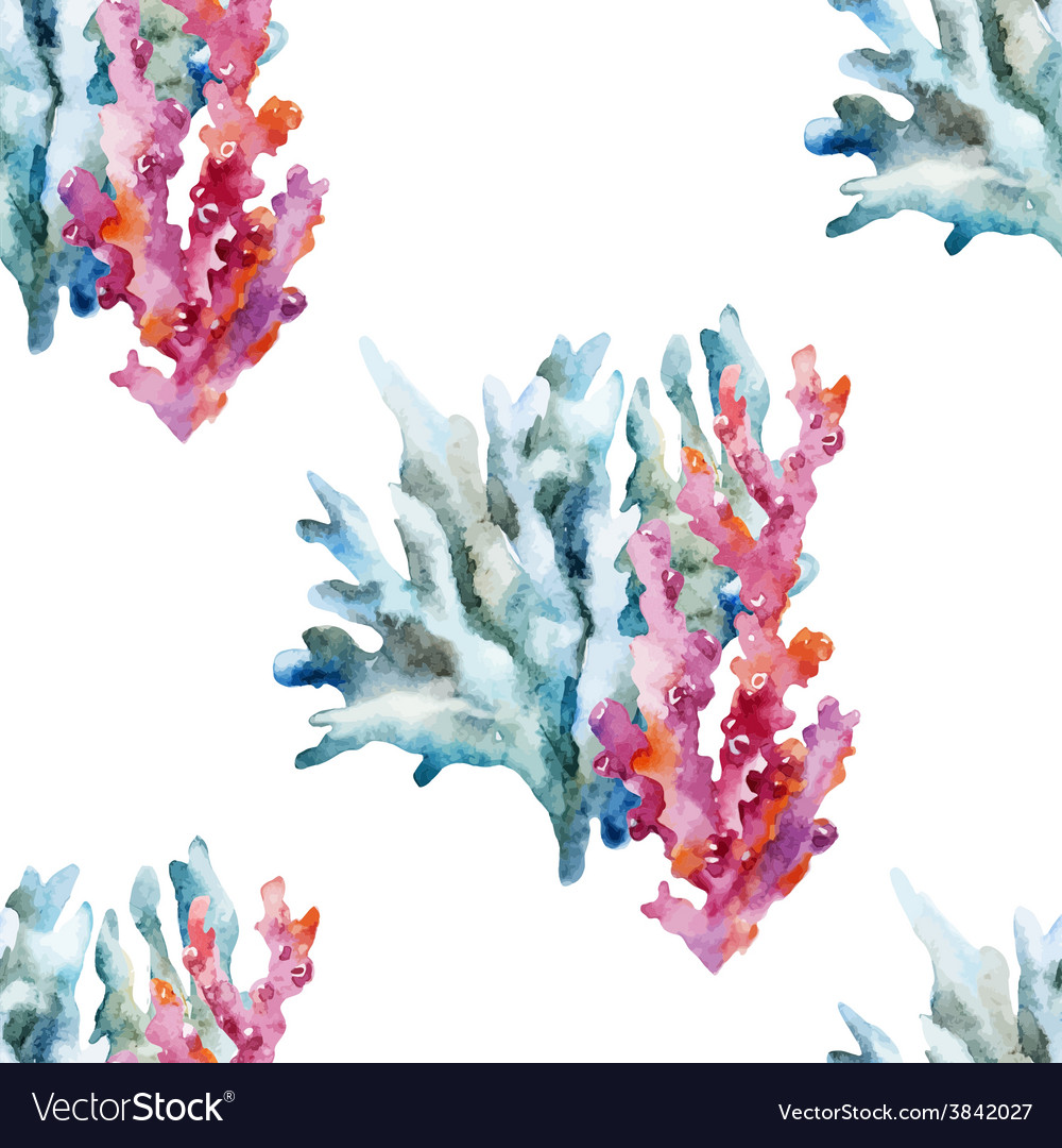 Corals with shells and crabs vector | Price: 1 Credit (USD $1)