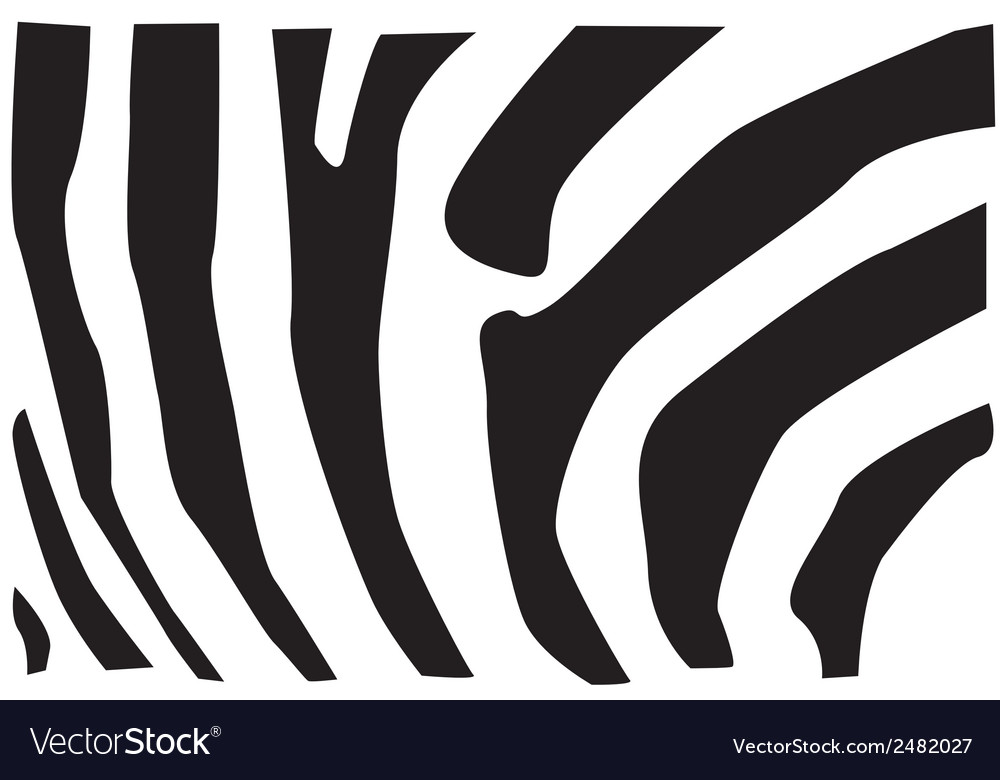 Zebra fur pattern vector | Price: 1 Credit (USD $1)
