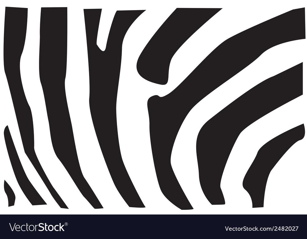 Zebra fur pattern vector | Price: 1 Credit (USD $1)