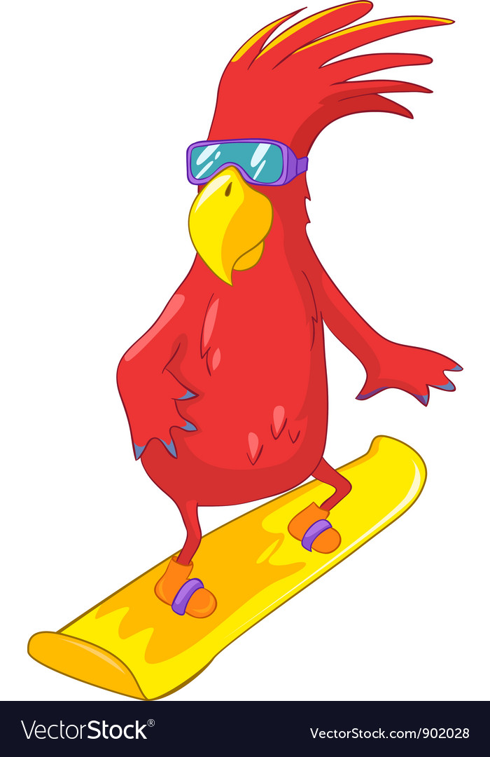 Funny parrot snowboarding vector | Price: 3 Credit (USD $3)