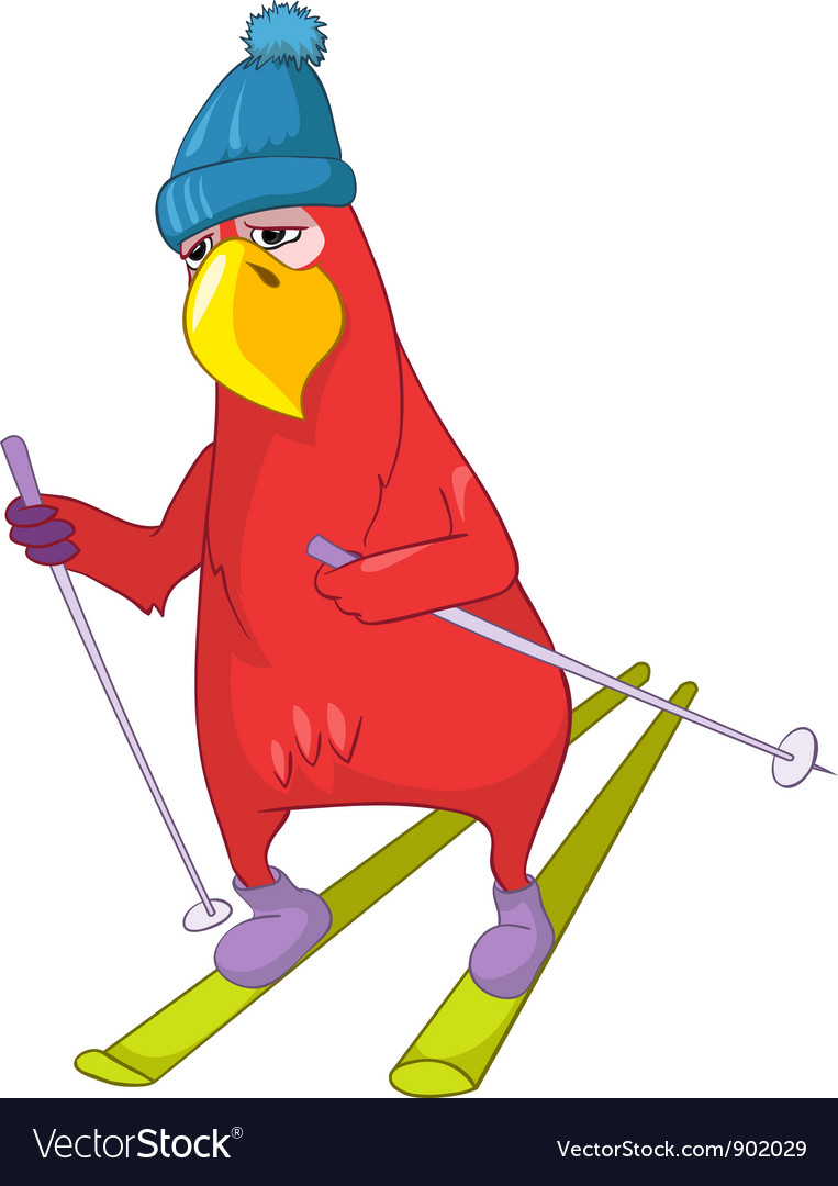 Funny parrot skiing vector | Price: 3 Credit (USD $3)