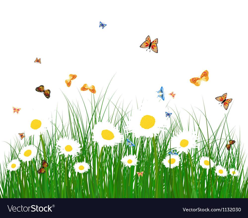 Color meadow vector | Price: 1 Credit (USD $1)