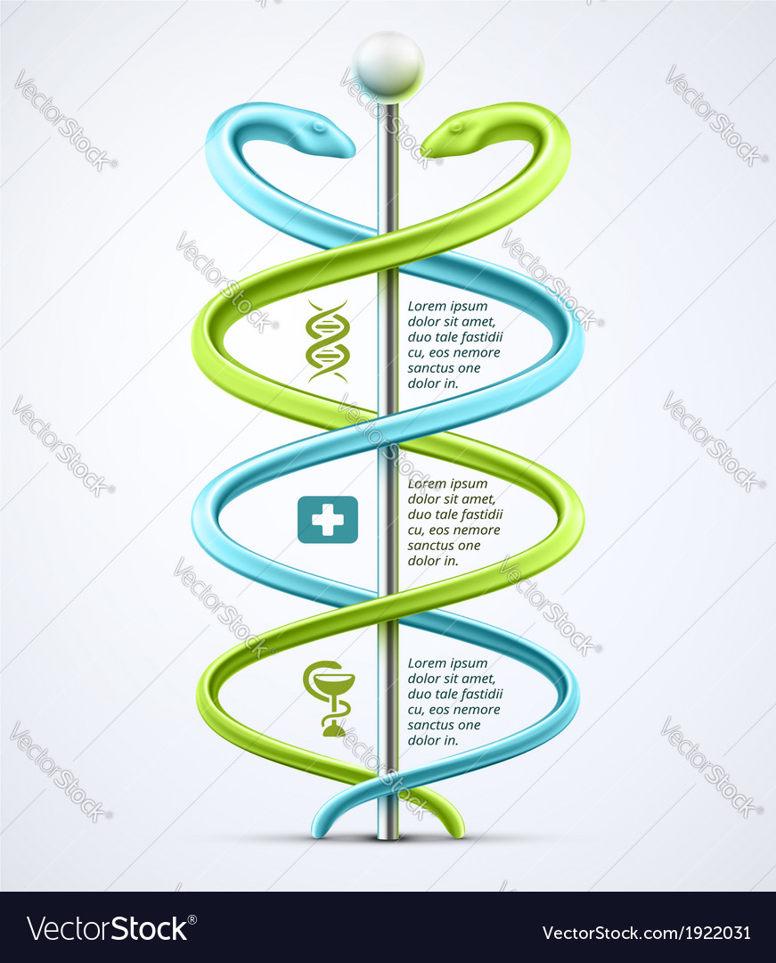 Caduceus medical infographic vector | Price: 1 Credit (USD $1)
