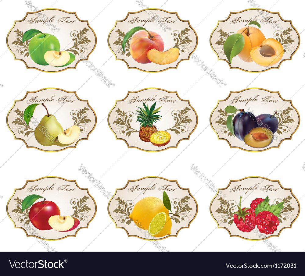 Label for product 2 vector | Price: 1 Credit (USD $1)