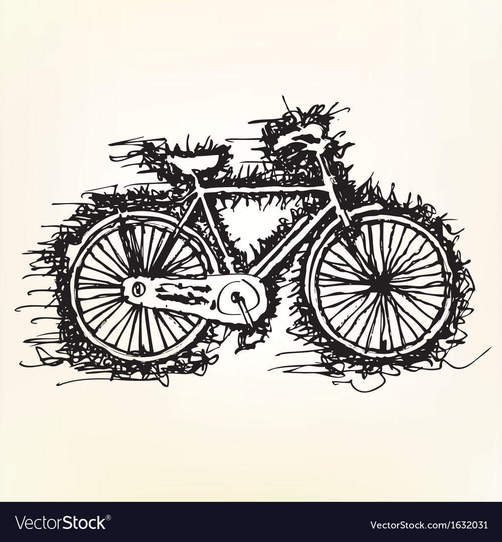Sketch drawing of bicycle vector | Price: 1 Credit (USD $1)