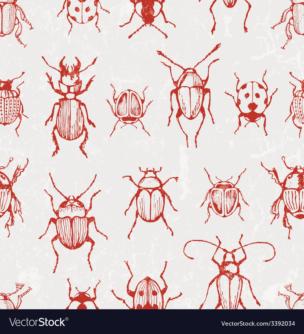 Seamless pattern with beetles vector | Price: 1 Credit (USD $1)