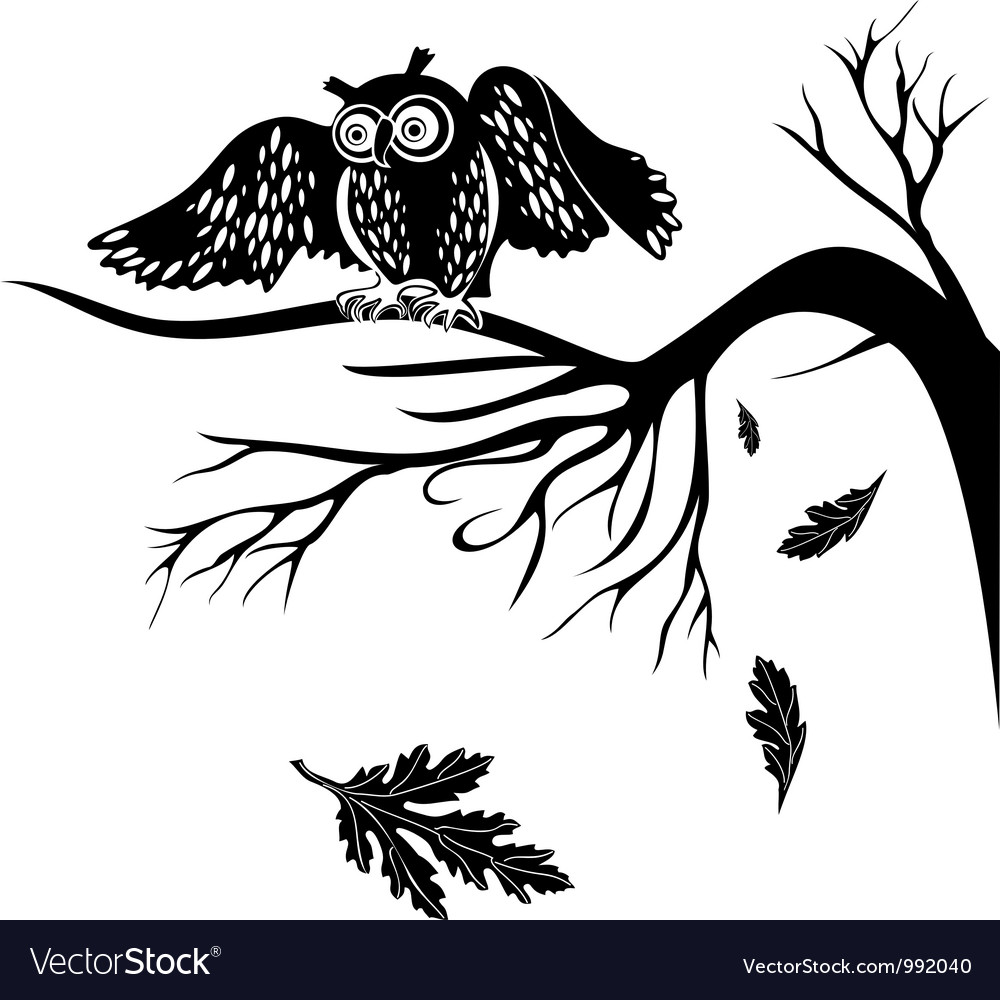Owl on a tree branch vector | Price: 1 Credit (USD $1)