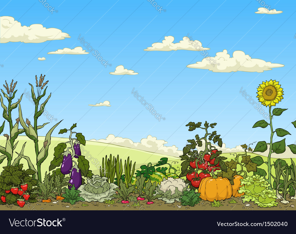 Vegetable garden bed vector | Price: 3 Credit (USD $3)