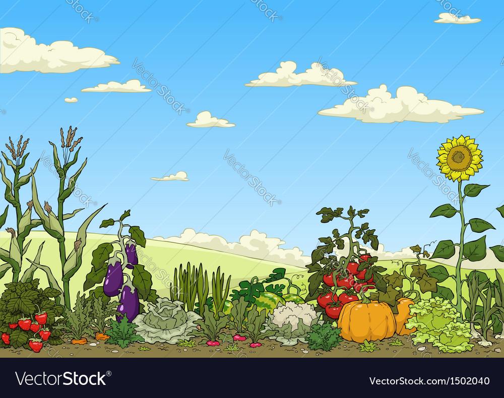 Vegetable garden bed vector | Price: 3 Credit (USD $3)